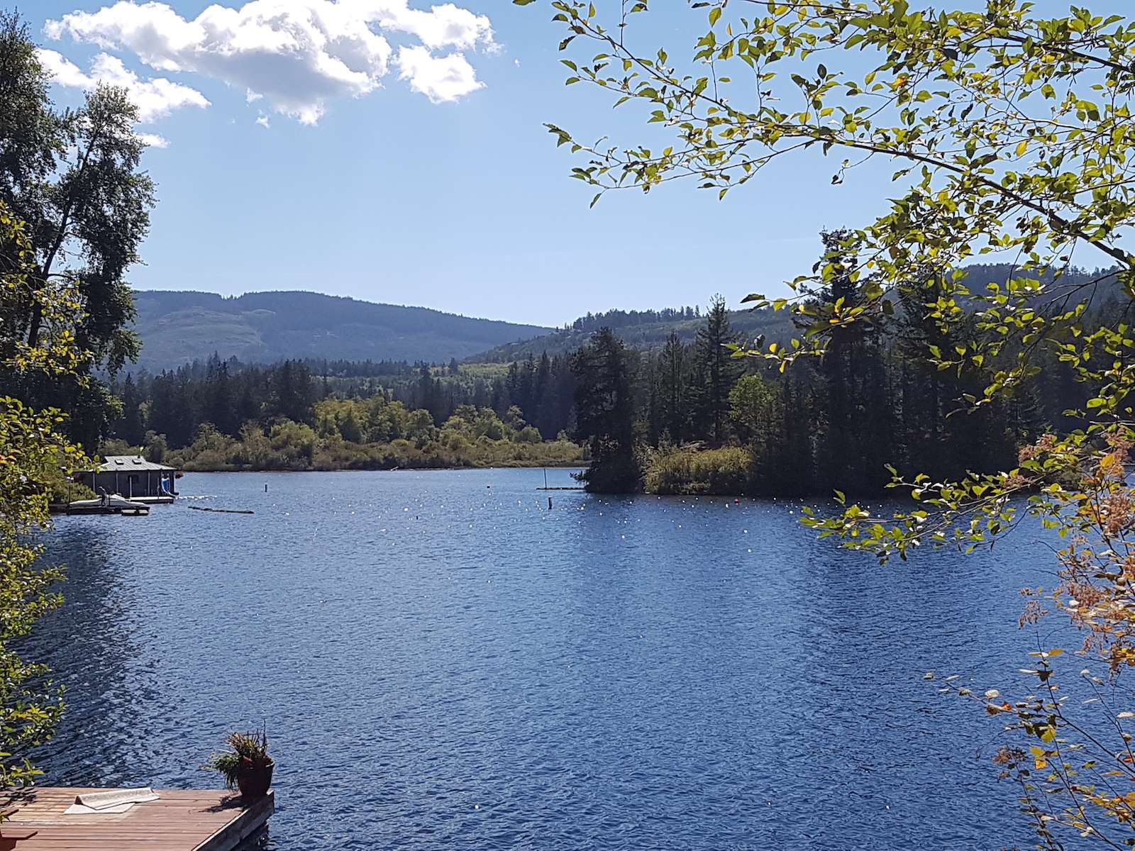Shawnigan Lake BC Real Estate & Attractions scenery